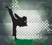 Sport illustration. karate