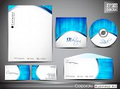 Professional corporate identity kit or business kit with wave pattern for your business includes CD Cover, Business Card, Envelope and Letter Head Designs. EPS 10.