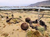 Caleta Del Sebo, Graciosa Island