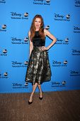 LOS ANGELES - AUG 4:  Darby Stanchfield arrives at the ABC Summer 2013 TCA Party at the Beverly Hilton Hotel on August 4, 2013 in Beverly Hills, CA