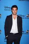 LOS ANGELES - AUG 4:  Joshua Bowman arrives at the ABC Summer 2013 TCA Party at the Beverly Hilton H