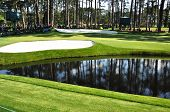 16Th Green At Masters