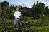 Portrait of happy senior man gardening in allotment