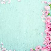 stock photo of pastel  - Blue wooden background with pink spring blossom flowers and copy space - JPG