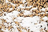pile of wood in the snow