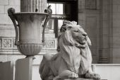 Stone Lion And Grecian Urn