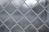 Icy wire mesh fence in winter