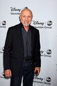 LOS ANGELES - JAN 17:  Hector Elizondo at the Disney-ABC Television Group 2014 Winter Press Tour Party Arrivals at The Langham Huntington on January 17, 2014 in Pasadena, CA