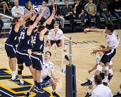 IRVINE, CA - JANUARY 17: The Brigham Young University men's volleyball team competes with the University of California - Irvine at the Bren Events Center in Irvine, CA on January 17, 2014