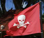 Pirate flag at the Bavaro Beach in Punta Cana, Dominican Republic