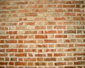 Brick Wall - Large