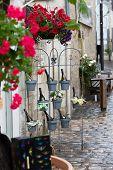 Bottles of wine in flowerpots - most beautiful French flowers