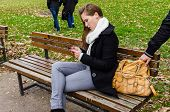 Pickpocket stealing handbag while woman using mobile phone on bench in park