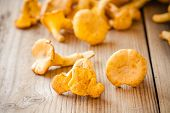 Fresh Chanterelle Mushrooms On A Wooden Background