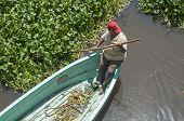 Navigating A Swamp