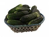 Crop Cucumbers In A Basket