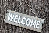Wood welcome sign hanging on tree