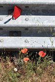 Road With Poppy Flowers