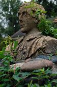 Vine-covered antique statue