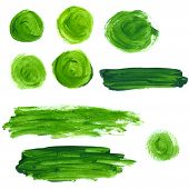 Set of green oil paint splotches and strokes. Artistic design elements.
