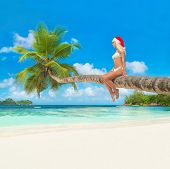 Cute Blonde Woman In Bikini And Christmas Hat On Palm Tree At Tropical Beach