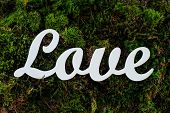White wooden word love