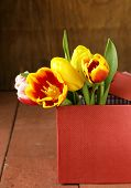 bouquet spring beautiful multicolored tulips flowers