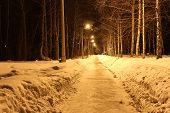stock photo of novosibirsk  - Lights illuminate the road in the village - JPG