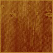 vector illustration of engraving wooden texture. abstract timber sketch