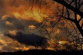 Golden Sunset In December
