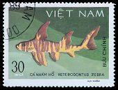Stamp Series Saltwater Fish