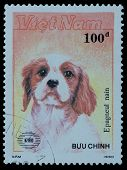 Stamp Series Buu Chinh