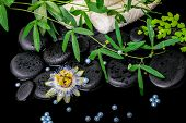 Spa Concept Of Passiflora Flower, Green  Branches, Towels, Zen Basalt Stones With Drops And Pearl Be