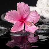 Still Life Of Pink Hibiscus Flower With Drops And White Towels On Zen Stones In Ripple Water, Closeu