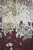 Cracked Grunge Old Paint Background On Wooden Door
