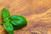 pic of basil leaves  - Aromatic spice - JPG