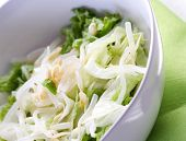 picture of soybean sprouts  - Studio shot of salad with sprout - JPG
