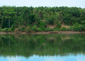 picture of dong  - Serenity river in Dong Nai southern Vietnam - JPG
