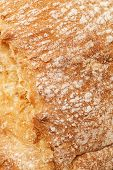picture of crust  - Detail of bread crust Food backgrounds and textures - JPG