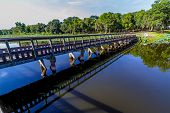 pic of dock a pond  - An Interesting Perspective of a Wooden Bridge or Fishing Dock on a Summer Day - JPG