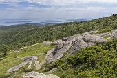 Постер, плакат: Cadillac Mountain View
