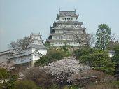 Himeji Castle. Japan 055