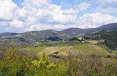 stock photo of farmworker  - Tuscany landscape - JPG