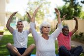 Senior people exercising with hands raised while sitting at park poster