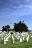 pic of headstones  - Headstones and Flags at American National Military Cemetery - JPG