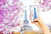 Tourist Take Image Of Paris Eifel Tower At Spring poster
