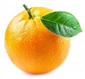 Orange fruit with orange leaf with water drops isolated on white background. poster
