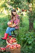 Beautiful Girl Picking Ripe Organic Apples In Basket In Orchard Or On Farm On Fall Day. poster