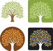 picture of combinations  - Stylized illustration of a tree in four color combinations - JPG
