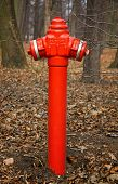 Close-up red fire hydrant